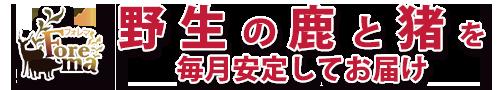 日本最大のジビエ食材マーケット Foremaがお届けする